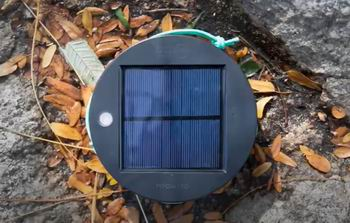 best solar path lights for shade