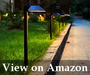low voltage led pathway lights